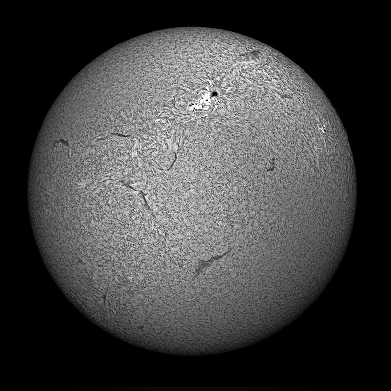 sun-ha-800.jpg