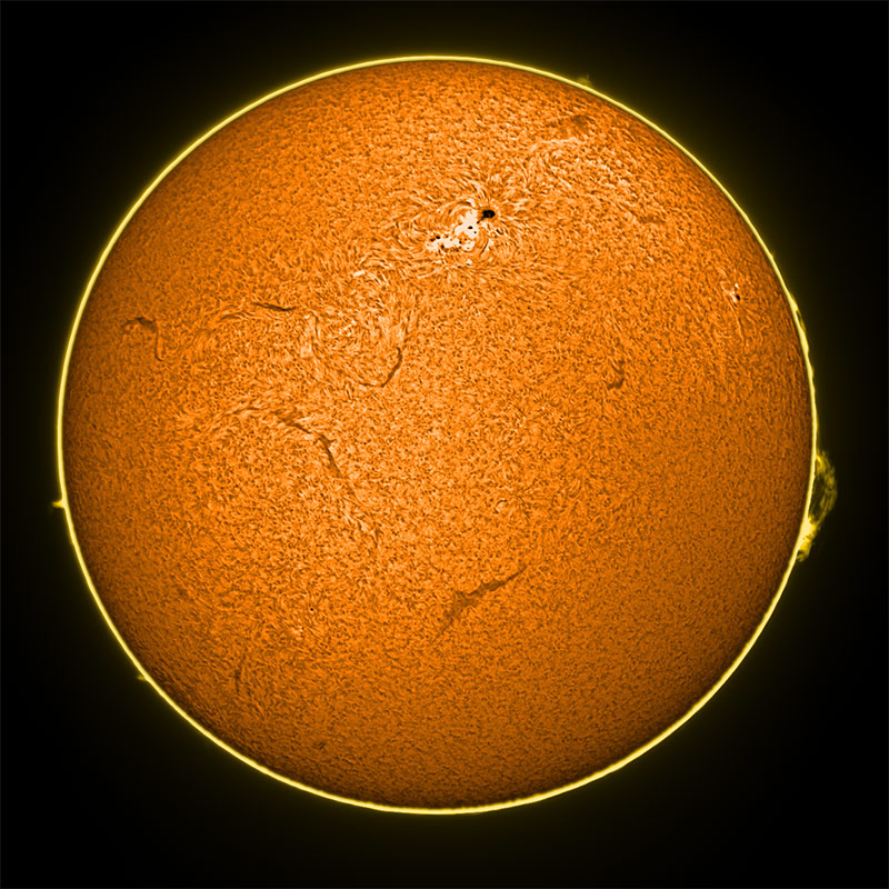 sun-ha-composite-color-800.jpg